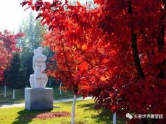 """长春雕塑艺术馆 十一黄金周 ,来雕塑园""""枫""""起来"""