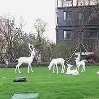 BLG726-玻璃钢小鹿雕塑_玻璃钢仿真小鹿雕塑厂