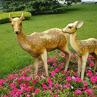 BLG731-玻璃钢小鹿雕塑_玻璃钢仿真小鹿雕塑制作