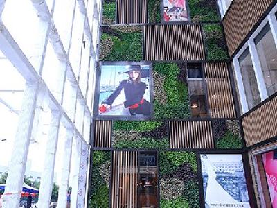LD198-广场植物绿雕加工厂