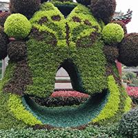 LD309-广场植物绿雕加工