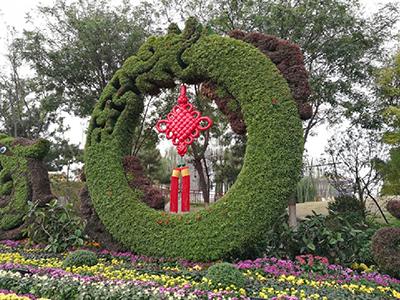 LD311-广场植物绿雕厂家