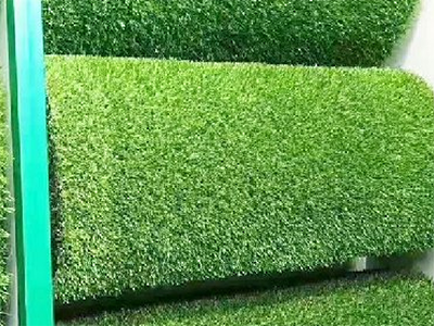 LD441-广场植物绿雕定制
