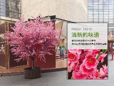 LD462-广场植物绿雕哪家好