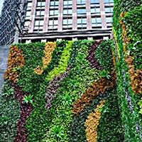 LD556-广场植物绿雕价格