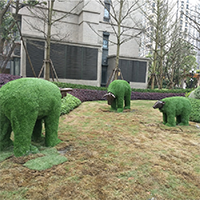 LD627-广场植物绿雕公司