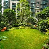 LD632-广场植物绿雕厂