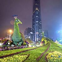LD634-广场植物绿雕设计