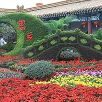LD637-广场植物绿雕制作