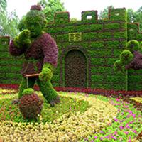 LD643-广场植物绿雕公司