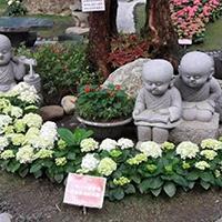 XFGS2656-小和尚石雕塑像_小沙弥石雕像公司