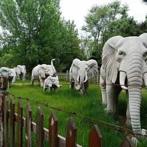 【石雕动物系列079】石雕大象厂