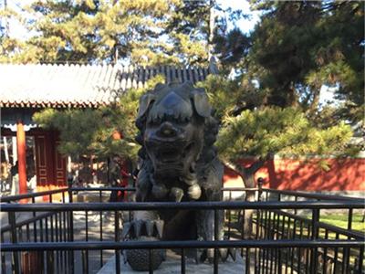 539西式石雕狮子花岗岩石雕狮子青石
