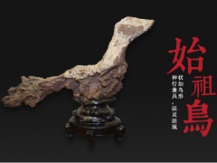 金陵桐和藏石赏析