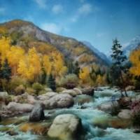 """""""《吉尔吉斯油画—风景1》60cm×80cm2万元/幅"""""""