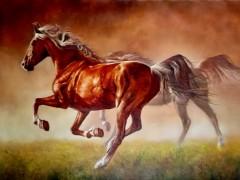 田跃民《吉尔吉斯油画—马2》60cm×80cm(2万元/幅